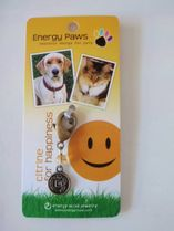 Energy Muse Dogs