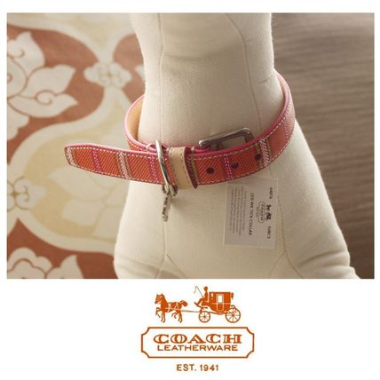 COACH sold out rare and lovely pink stripe dog collar