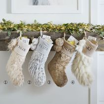 Pottery Barn Special Edition Party Supplies
