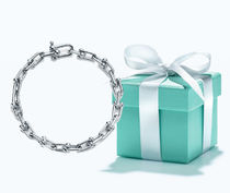 Tiffany & Co Tiffany HardWear Chain Party Style Silver Fine