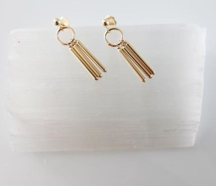 Silver 14K Gold Elegant Style Earrings