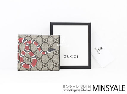 GUCCI Snake print coin wallet  [London department store new item]