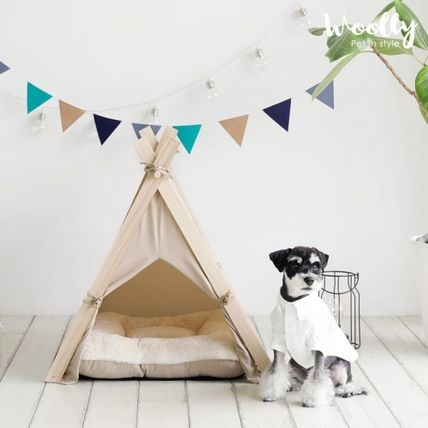 With modern pet tent cushion