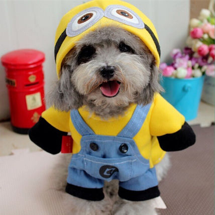 Pet clothes for dogs & cats Halloween costume anime