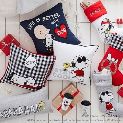 Collaboration Special Edition Characters Decorative Pillows