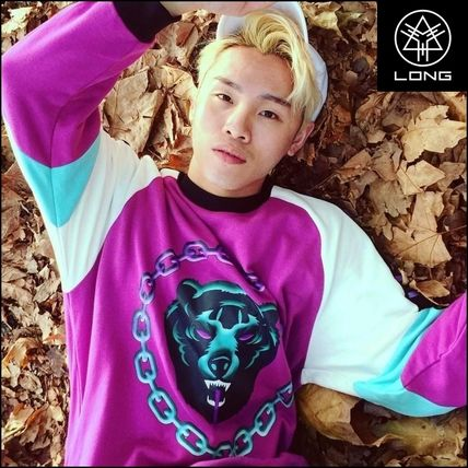 Crew Neck Pullovers Long Sleeves Plain Other Animal Patterns