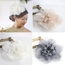 Costume Jewelry Party Style Hair Accessories