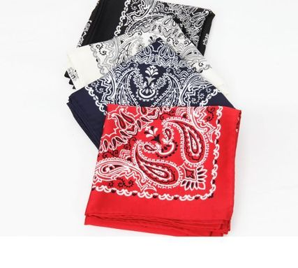 Paisley Casual Style Lightweight Scarves & Shawls