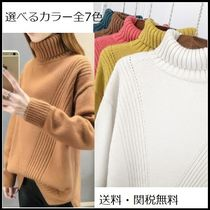 Long Sleeves Plain Medium High-Neck Sweaters