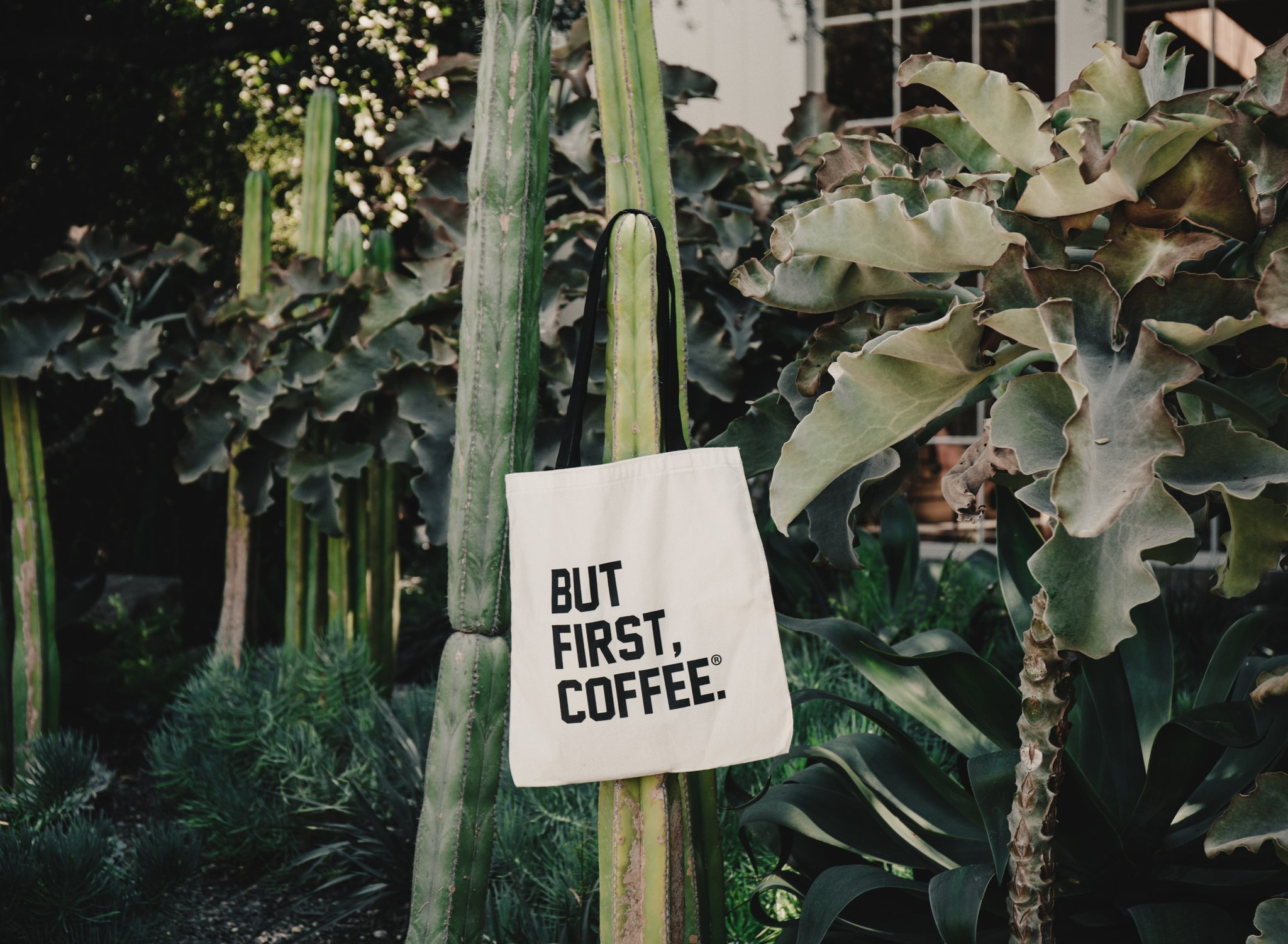 shop alfred coffee bags