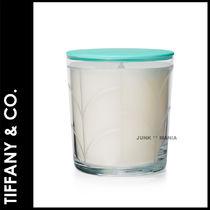 Tiffany & Co Fireplaces & Accessories