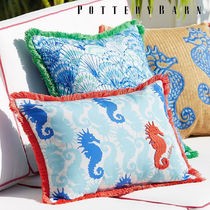 Pottery Barn Fringes Decorative Pillows
