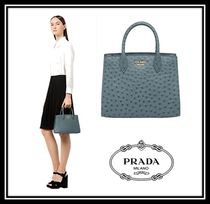 PRADA BIBLIOTHEQUE Ostrich Leather 2WAY Plain Elegant Style Handbags