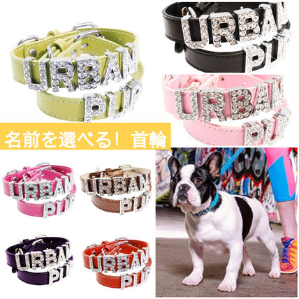 Unisex With Jewels Pet Supplies