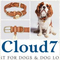 Cloud7 [Cloud7]Dog Collar Hyde Park Cognac