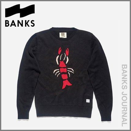 Crew Neck Street Style Long Sleeves Knits & Sweaters