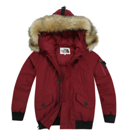THE NORTH FACE Down Jackets Down Jackets 6