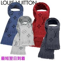Louis Vuitton Heavy Scarves & Shawls
