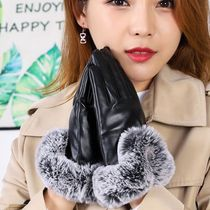 Plain Elegant Style Smartphone Use Gloves