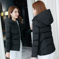 Plain Medium Home Party Ideas Special Edition Down Jackets