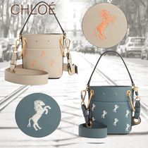 Chloe Calfskin 2WAY Other Animal Patterns Elegant Style