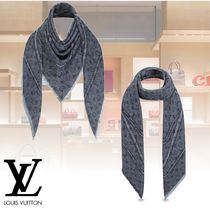 Louis Vuitton Monogram Elegant Style Accessories
