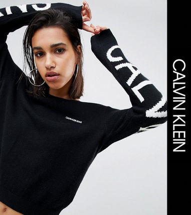 Crew Neck Casual Style Street Style Long Sleeves Sweaters