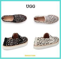 UGG Australia Other Animal Patterns Low-Top Sneakers