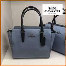 Coach Casual Style 2WAY Other Animal Patterns Leather Handbags