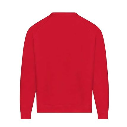 Louis Vuitton Sweatshirts Crew Neck Pullovers Unisex Street Style Bi-color 4
