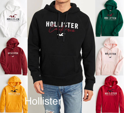 Hollister Co. 2019 SS Street Style Long Sleeves Cotton Hoodies