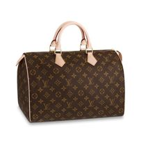 Louis Vuitton SPEEDY Speedy 35