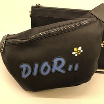 Christian Dior Nylon Street Style 2WAY Plain Hip Packs