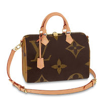 Louis Vuitton SPEEDY 2WAY Leather Boston & Duffles