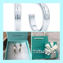 Tiffany & Co Tiffany T Silver Earrings