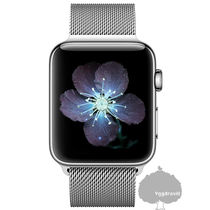 Unisex Street Style Apple Watch Belt Watches Watches