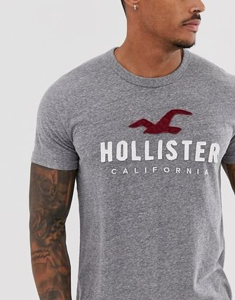 Hollister Co. Crew Neck Crew Neck Street Style Bi-color Cotton Short Sleeves 4