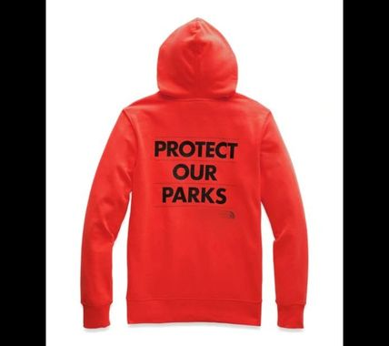 THE NORTH FACE Hoodies Pullovers Unisex Long Sleeves Hoodies 12