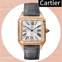 Cartier SANTOS Analog Watches