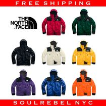 THE NORTH FACE 1990 MOUNTAIN JACKET GTX Unisex Street Style Jackets