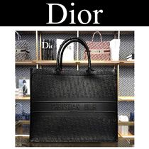 Christian Dior Casual Style Calfskin Street Style A4 2WAY Plain Leather