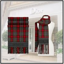 Christian Dior 2019-20AW DIOR GREEN TARTAN STOLEred&green morescarves&shawl