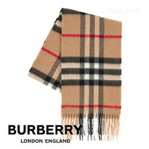 Burberry Unisex Petit Fringes Kids Girl Accessories