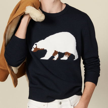 Crew Neck Pullovers Wool Long Sleeves Other Animal Patterns