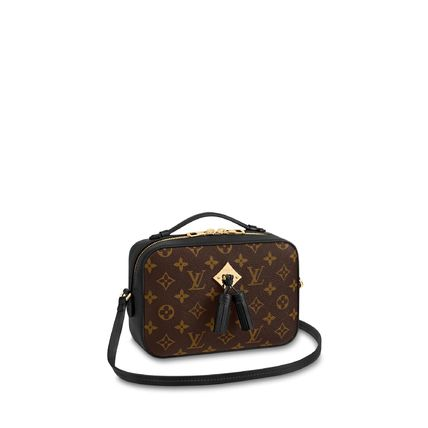 Louis Vuitton Shoulder Bags Monogram Calfskin 2WAY Plain Elegant Style Shoulder Bags 8