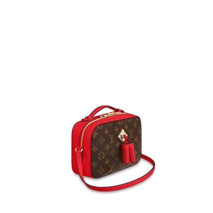 Louis Vuitton Shoulder Bags Monogram Calfskin 2WAY Plain Elegant Style Shoulder Bags 14