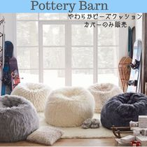 Pottery Barn Decorative Pillows