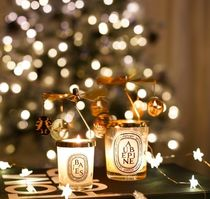 DIPTYQUE Special Edition Beauty