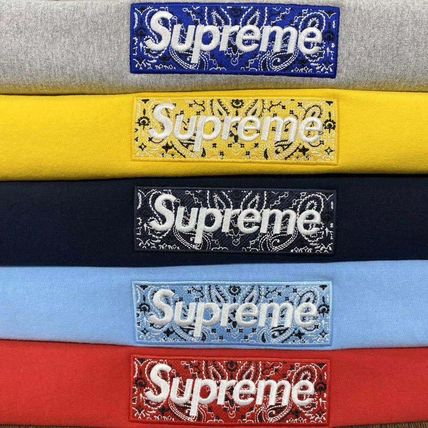 Supreme Hoodies Unisex Street Style Long Sleeves Plain Cotton Logo Hoodies 3