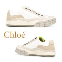 Chloe Rubber Sole Lace-up Low-Top Sneakers